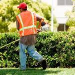 La revoca della sanzione del lavoro di pubblica utilità